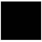 WRAN Logo